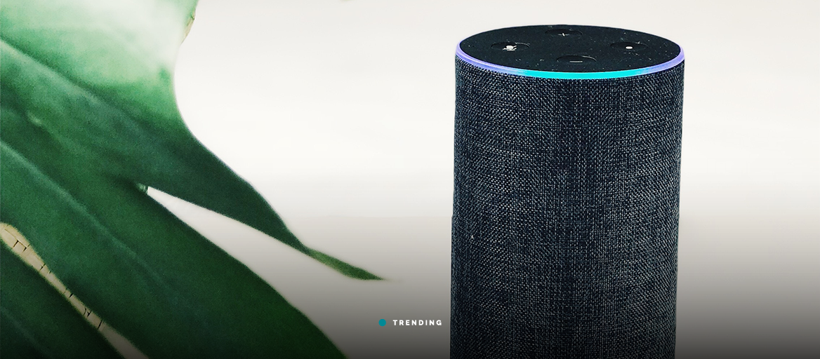 Amazon Echo devices now support multi-room audio